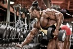 Kai's 10 Big Back Principles