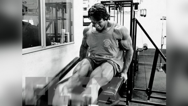 The complete arnold legs flex online the complete arnold legs malvernweather Gallery