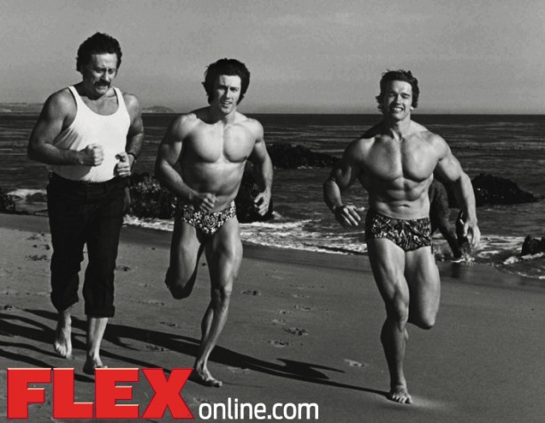 Arnold schwarzenegger answers your cardio questions flex online arnold schwarzenegger answers your cardio questions malvernweather Images