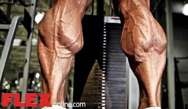 In The Crosshairs Outer Calves Flex Online