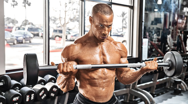 The 5 Best Programs for Putting on Mass