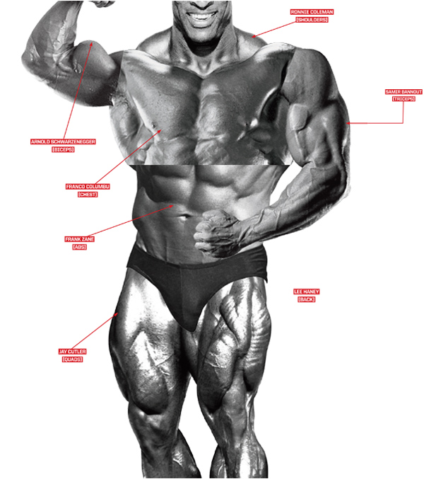 The Best Olympia Body Part Workout | Muscle & Fitness