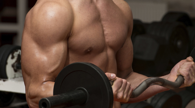 Peak Arms: The Ultimate Arms Workout