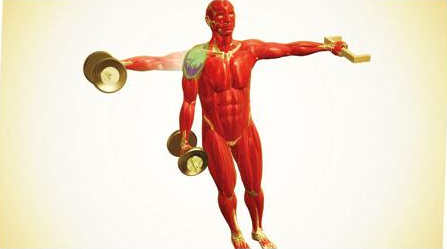 lateral dumbbell raise