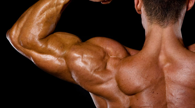 8 Ways to Build Shoulder Strength and Stability