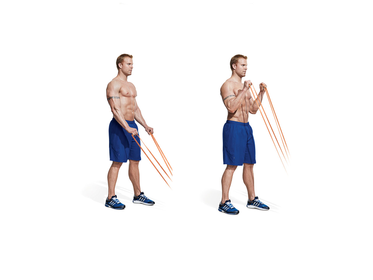 Reverse Curl (band) Video - Watch Proper Form, Get Tips ...