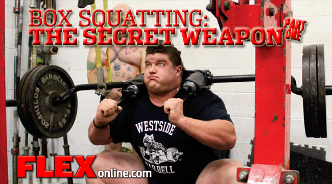 How Box Squats Can Help You Gain | Muscle & Fitness