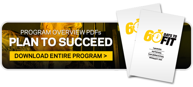 60 Days To Fit Program FINAL Copy