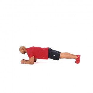 how to do a plank muscle fitness
