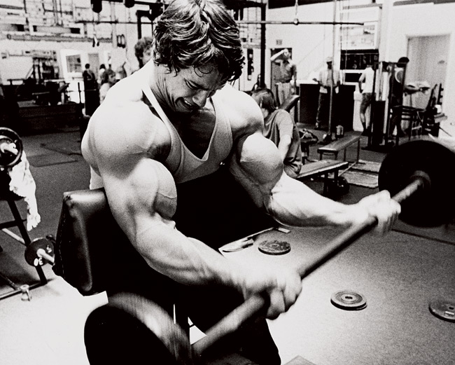 Arnold Schwarzenegger arms workout