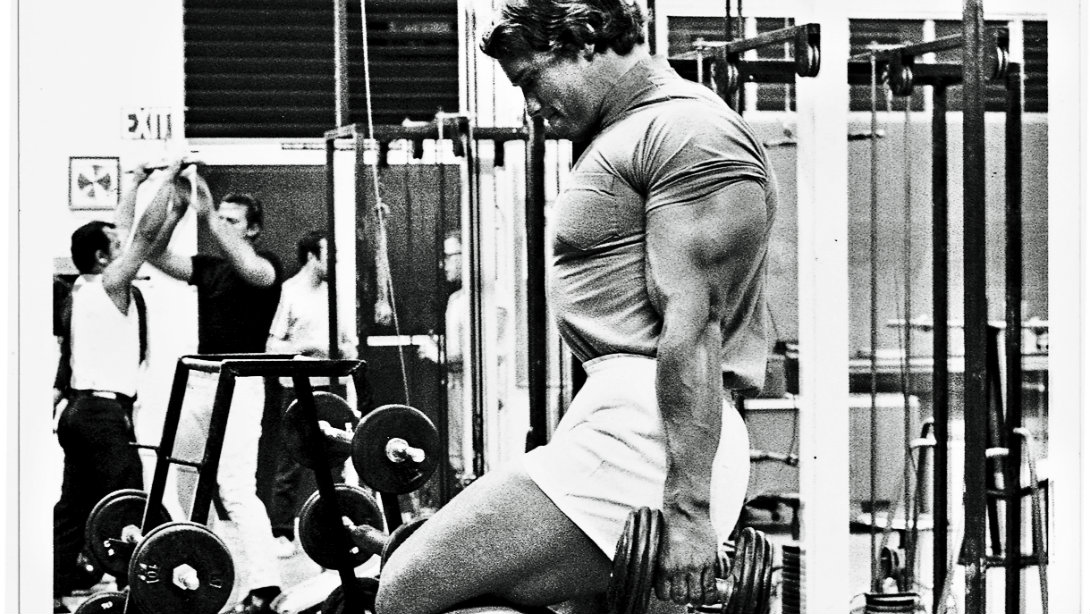Arnolds letter set goals like a terminator muscle fitness malvernweather Gallery