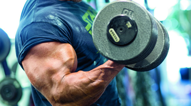 Power Bodybuilding: Shock and Awesome Biceps