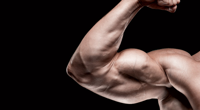 Arm Annihilation: Straight-Up Arms Workout | Muscle & Fitness