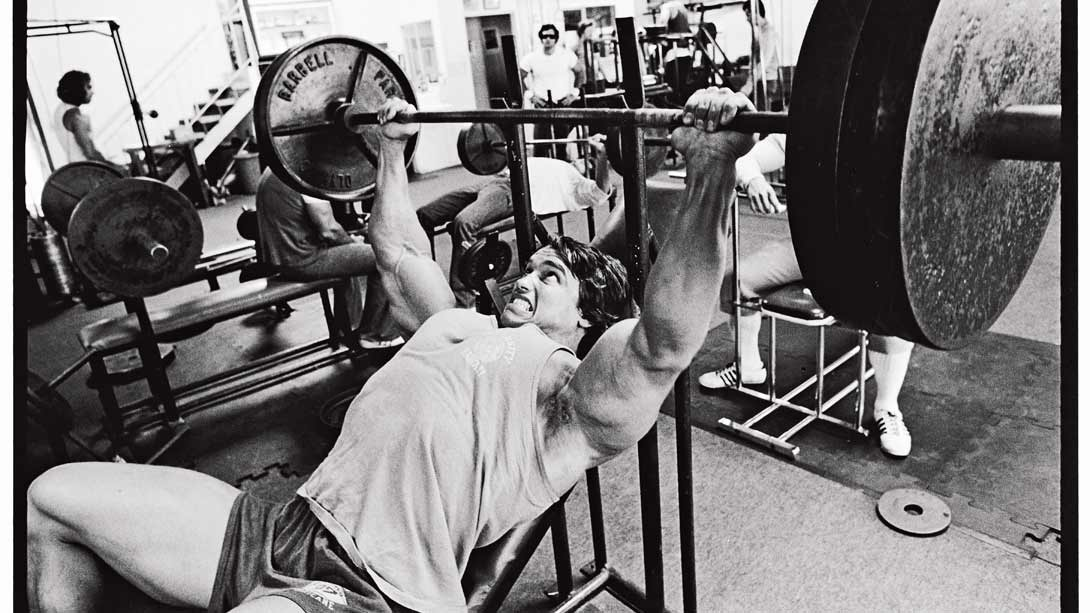 The Ultimate Arnold Training Guide