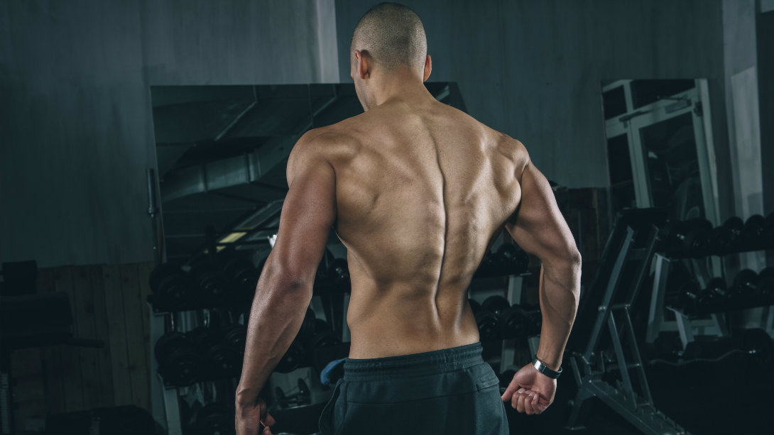 3 Exercises For A Strong Lower Back Muscle Fitness