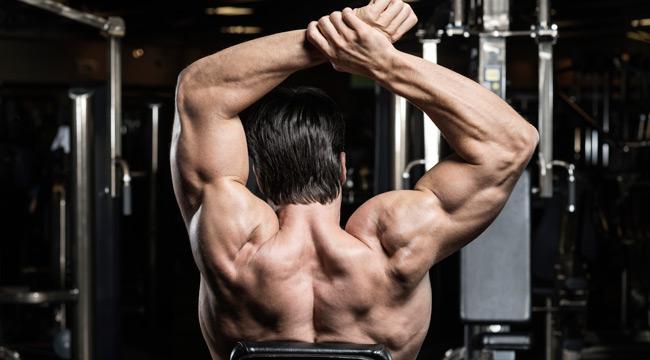 Straight-Up Delt Workout for Massive Shoulders