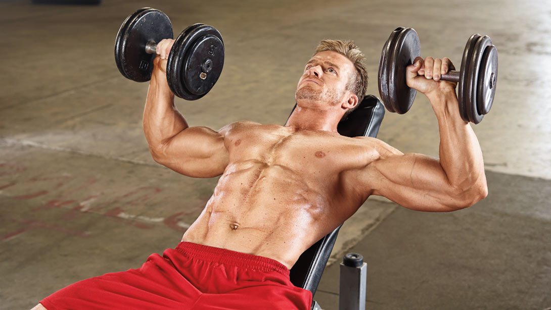 Learn To Press along with your Pectorals bigger chest