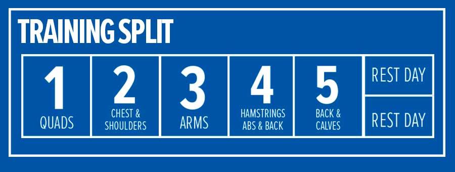 kris gethin 12 week muscle builder day 8
