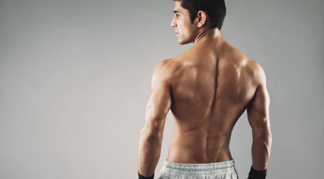 top 5 muscle building back exercises muscle fitness