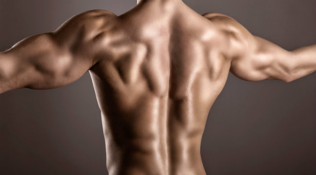 8 Worst Things You Can Do to Build a Bigger Back