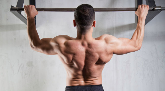 Vertical Stamina Amp Strength Training Routine Muscle