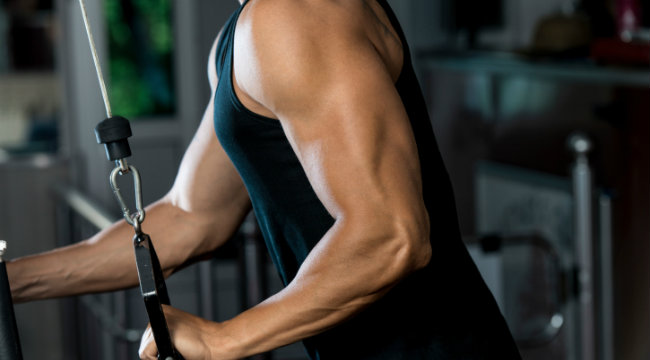5 Rules for Building Bigger Triceps