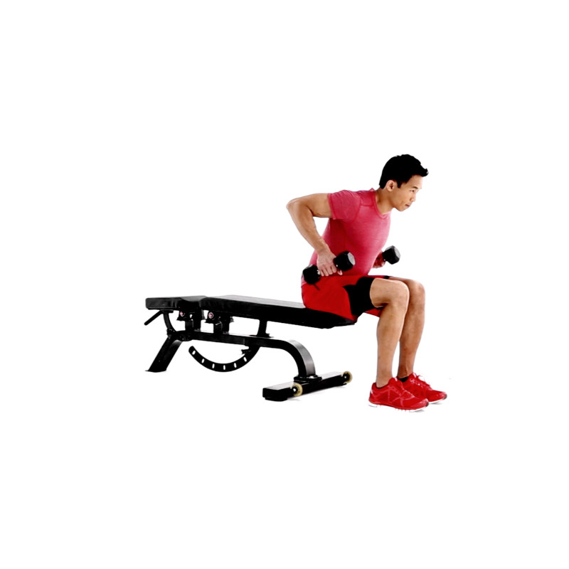Free Weight Dumbbell Back Exercises: How To Properly Execute A Seated Dumbbell Row