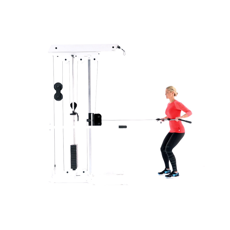 Cable Row Standing Video Watch Proper Form Get Tips More