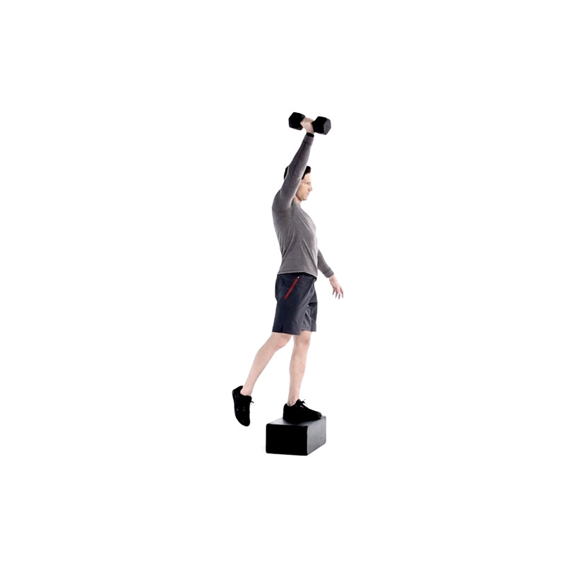 Single Arm Step Up And Press Video Watch Proper Form