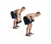 Dumbbell bentover row thumbnail