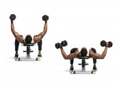 Exercise: How to do a Dumbbell Half Flye thumbnail