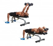 Lying Dumbbell Triceps Extension thumbnail