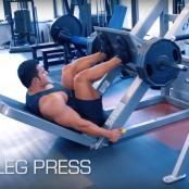 Leg Press thumbnail