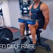 Seated Calf Raise thumbnail