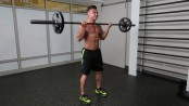 summer-shred-barbell-curl thumbnail