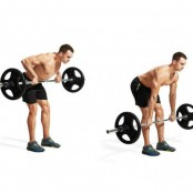 Man Performing Barbell Bentover Row thumbnail