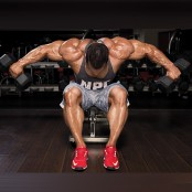 Seated Rear Delt Flye thumbnail