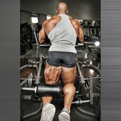 Single-Leg Curl thumbnail