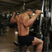 Warrior Fit Behind-the-Head Lat Pulldown thumbnail
