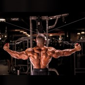 Cable Rear Delt Flye thumbnail