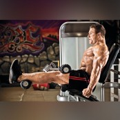 Seated Leg Curl thumbnail