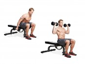 Seated Dumbbell Clean  thumbnail
