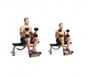 Seated Calf Raise- Toes Out  thumbnail