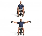 Seated dumbbell lateral raise thumbnail