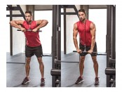 Triceps Cable Pressdown thumbnail