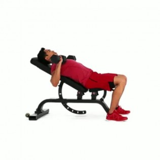 How To Properly Execute A Incline Dumbbell Bench Press Muscle