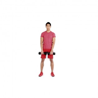 how to properly execute a dumbbell upright row muscle fitness