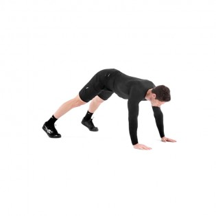 Judo Pushup Video - Watch Proper Form, Get Tips & More