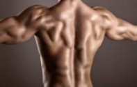 back muscle in minutes