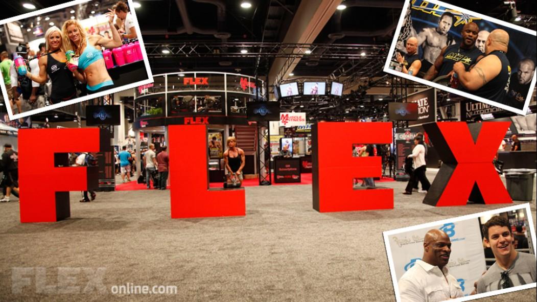 2013 Olympia Expo Madness thumbnail
